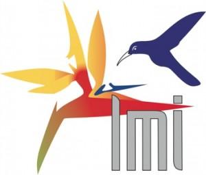 lmi-small